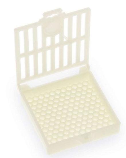 Modèle de cage Scalvini
